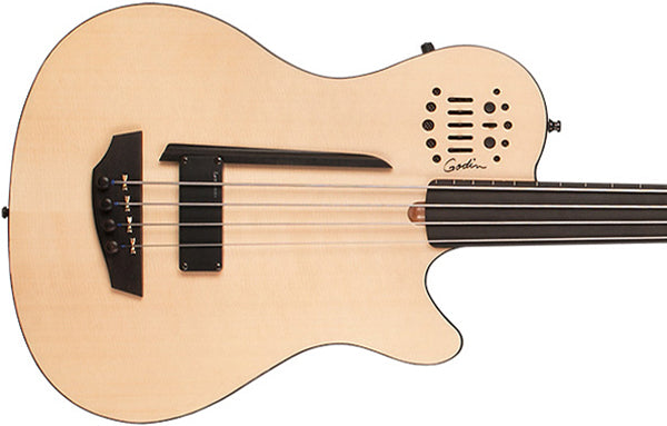 Godin A4 Fretless - The Bass Gallery