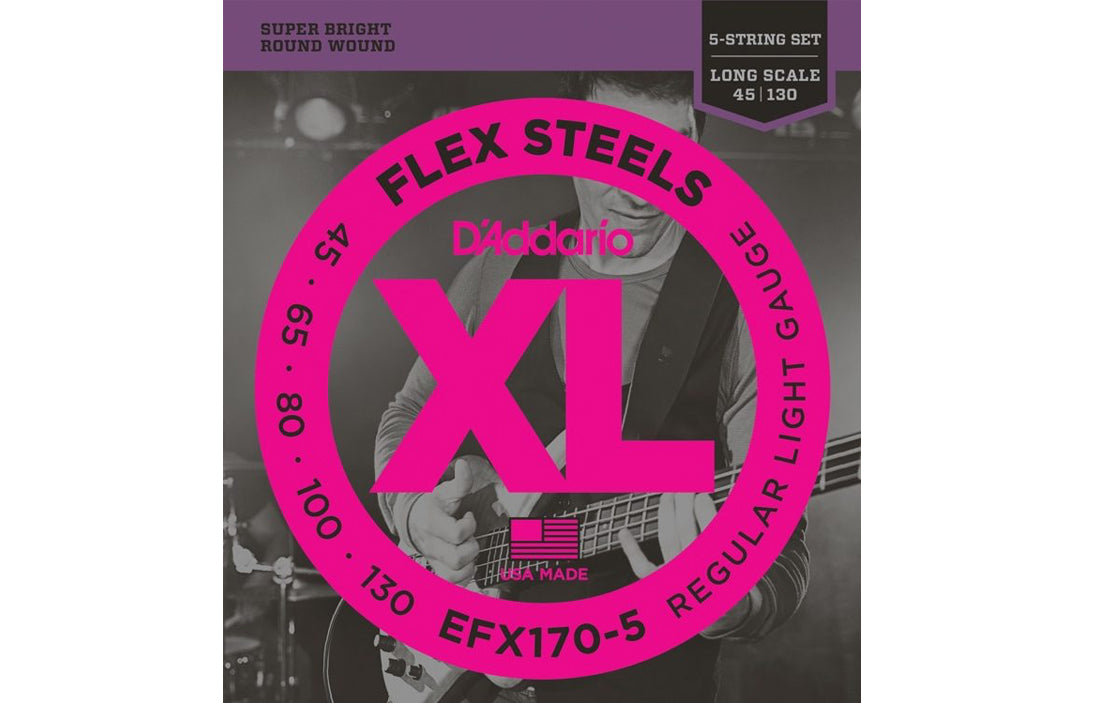 D'Addario EFX170-5 - The Bass Gallery