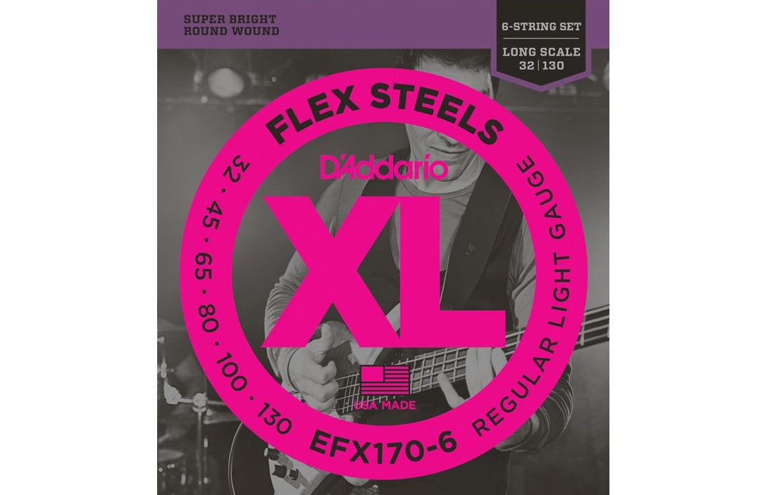 D'Addario EFX170-6 - The Bass Gallery