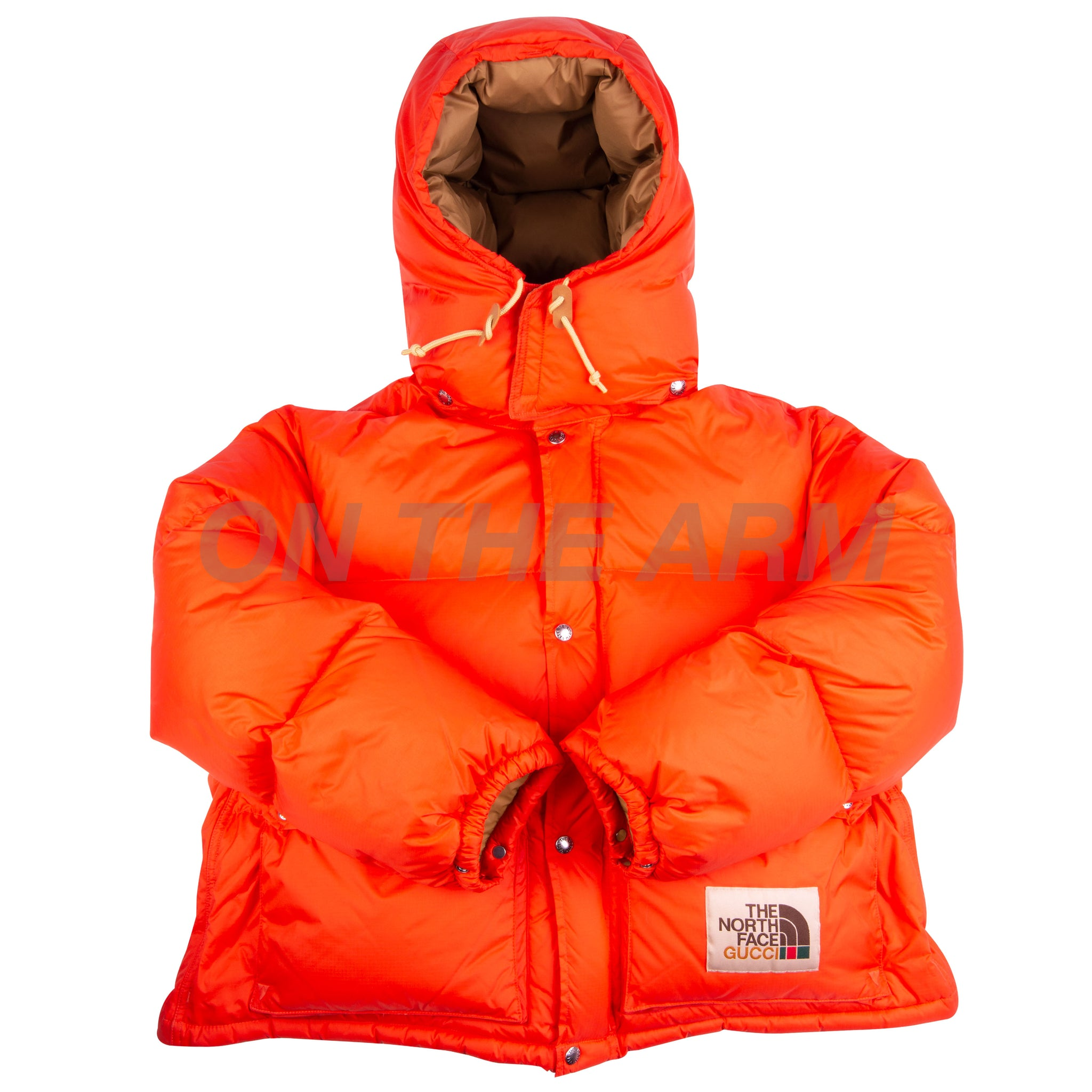 The North Face Orange Gucci Puffer Jacket