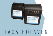 LAOS BOLAVEN - TASSE COFFEE PROJECT