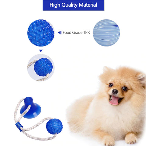 Dog suction ball, dog ball suction to floor, dog suction tug ball, dog suction toy with ball, dog ball and suction cup | DAILY DEAL ME