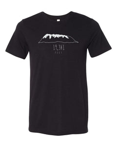 Short Sleeve Solid Black Triblend Tee - Feet