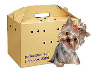 "Pet Carrier Box 18.5"" x 10"" x 12"" (1.2 c/f)"