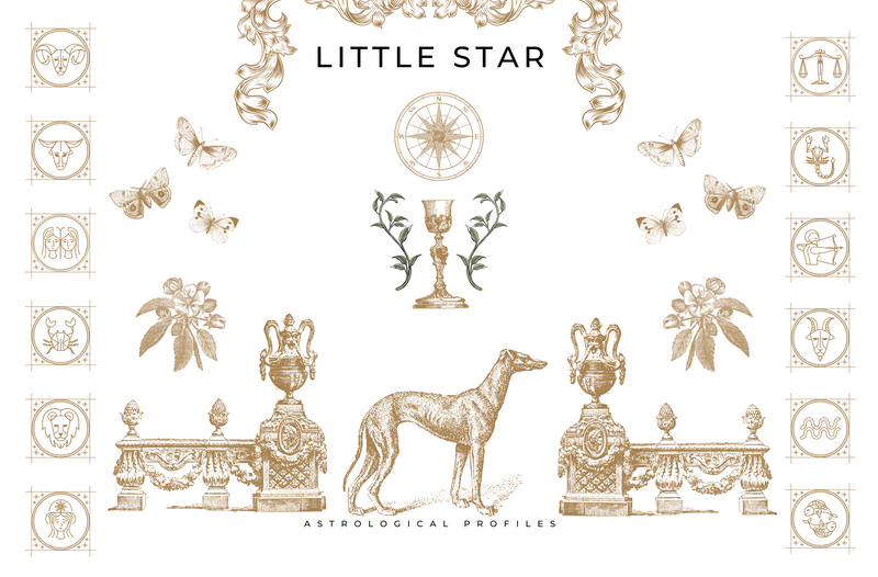 LITTLE STAR ASTROLOGY