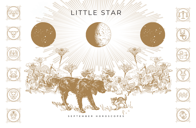 LITTLE STAR SEPTEMBER 2020 HOROSCOPES