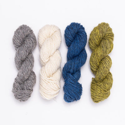 Brayden Colorwork Mittens Knitting Kit