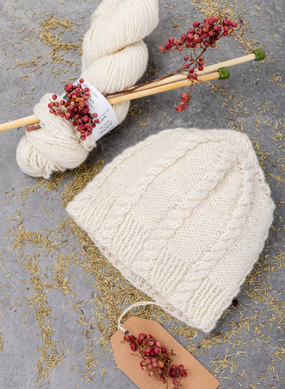Cassidy Hat Knitting Kit