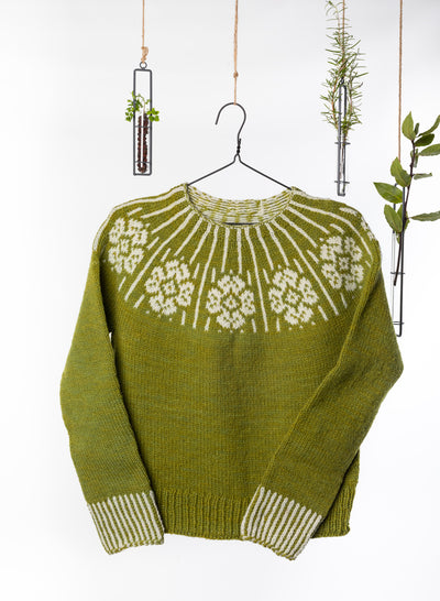 Dervla Colorwork Sweater Knitting Kit