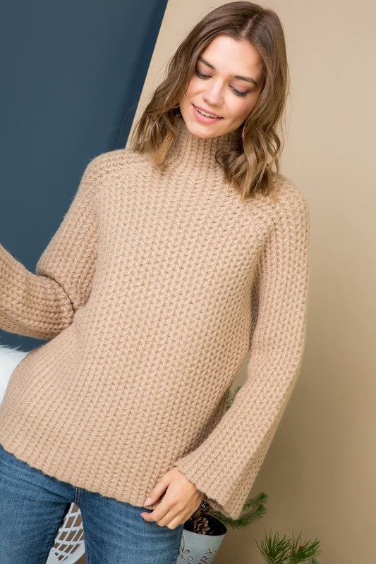 Hailey Turtleneck Knit Sweater