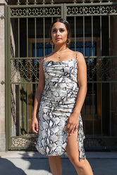 Stunning Veronica Dress - Snake Print