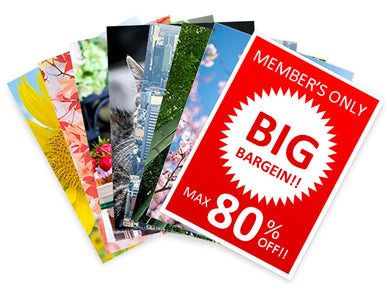 Postcard Print for marketing promotion advertisement