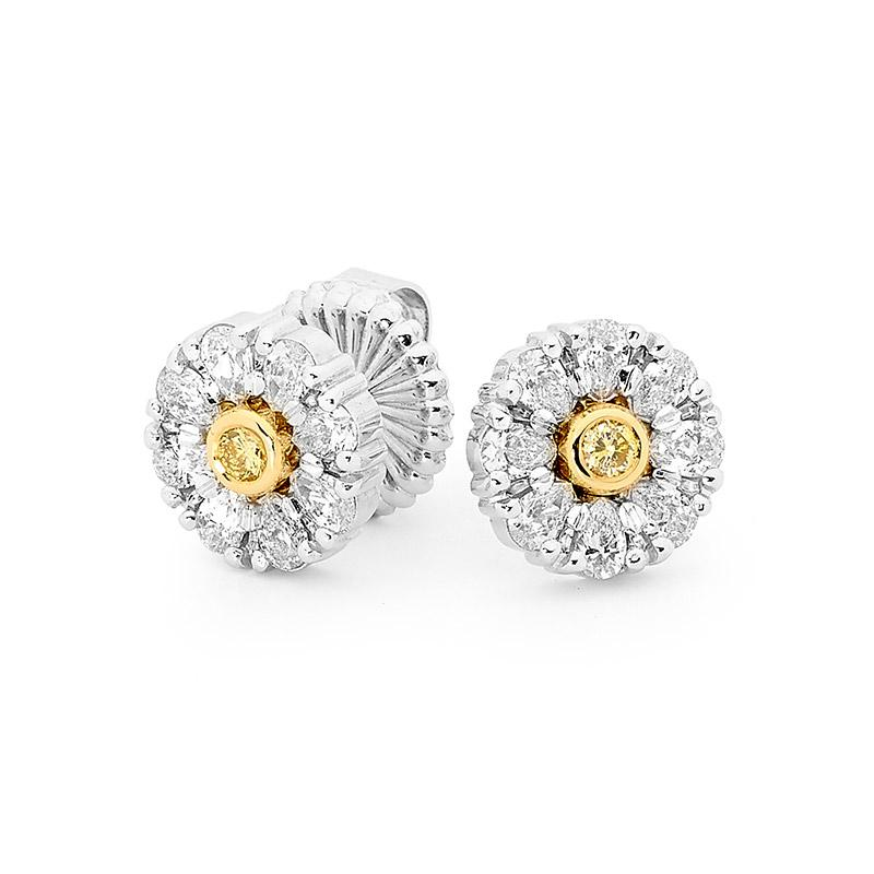 Smales Fancy Yellow & White Diamond Flower Stud Earrings in Two-Tone Gold Perth