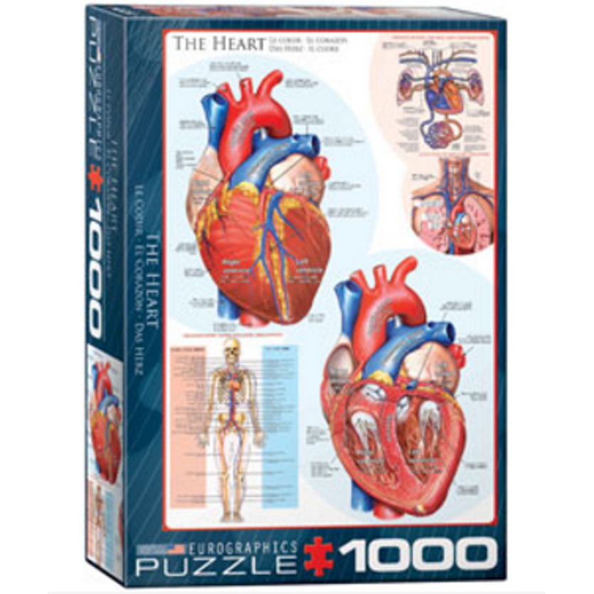 The Human Heart 1000 Piece Jigsaw Puzzle by Eurographics ...