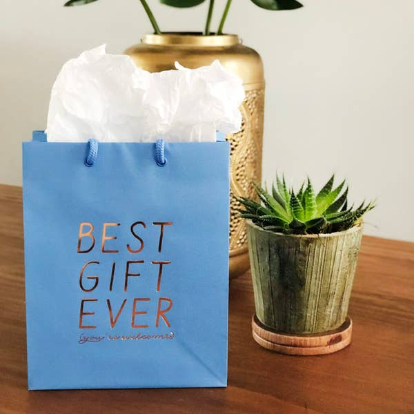 Best Gift Ever (you're welcome) Gift Bag
