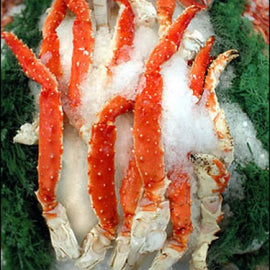 [online_seafood_market] -  Daily Catch Seafood Company