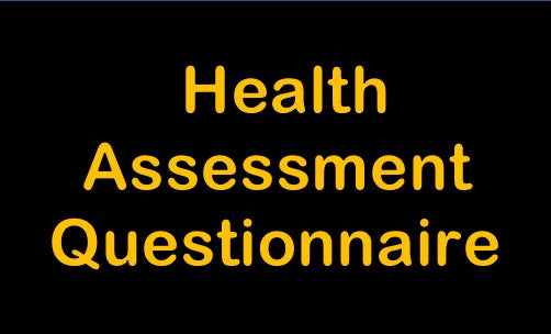 Self Assessment Questionnaire