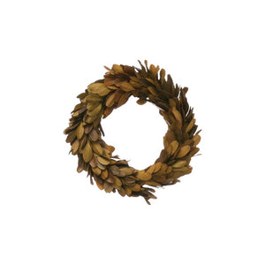 "Brown 6"" Preserved Boxwood Wreath"