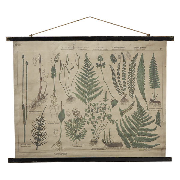 Botanical Fern Canvas Scroll