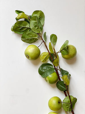 Green Apple Branch Stem