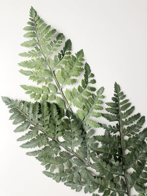 Faux Fern Stem