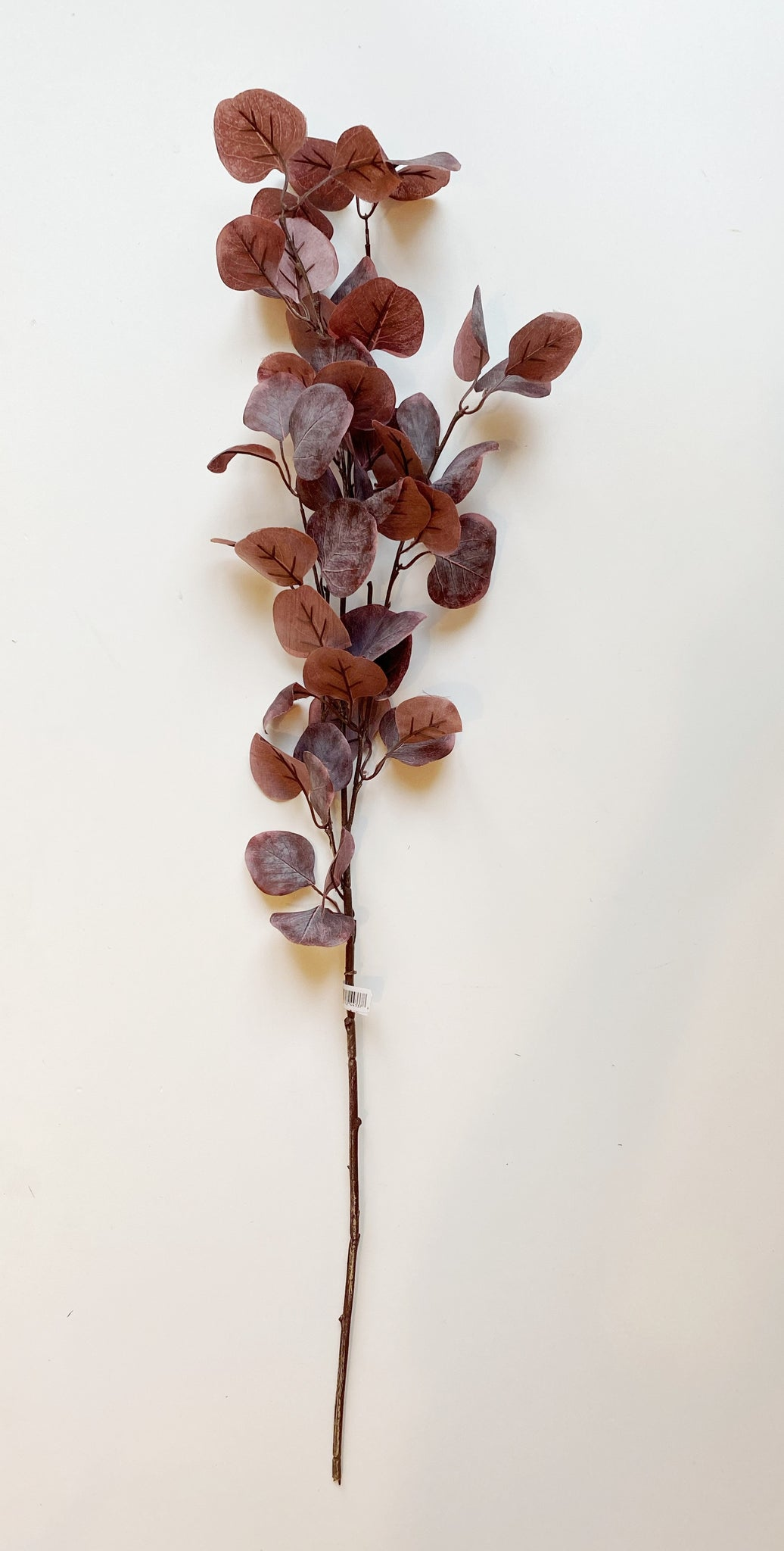 Burgundy Eucalyptus Spray Stem