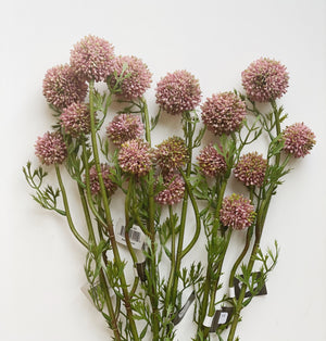 Pink Mini Allium Stem