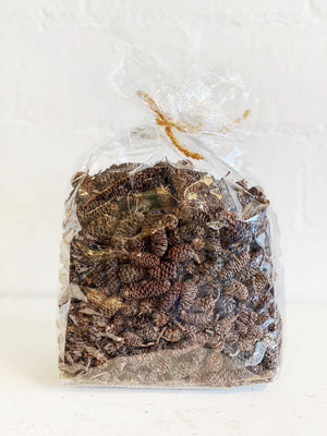 Bag of Natural Birch Pine Cones