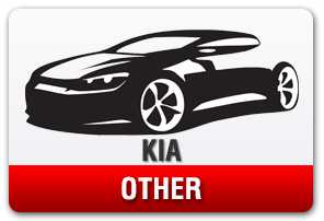 . Kia No-Drill Front License Plate Mount for Other Models
