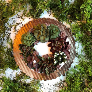 Succulent Wreath Cake