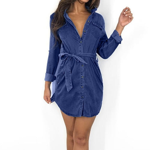 Long Sleeve Down Denim Dress