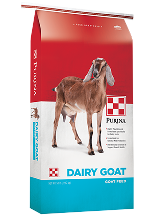 Purina® Dairy Goat Parlor 18