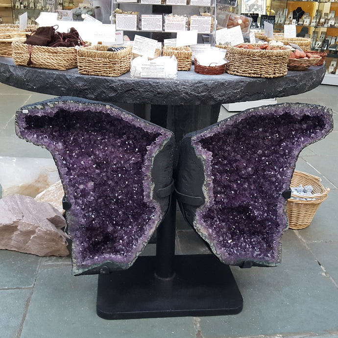 Amethyst Butterfly wings