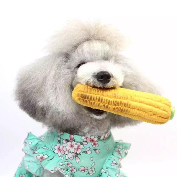 Novelty and Other Fun Pet Toys