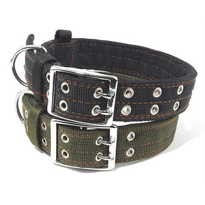 army green dog collar