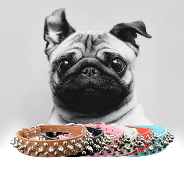 Spikes and Rivets Studded Dog Collar