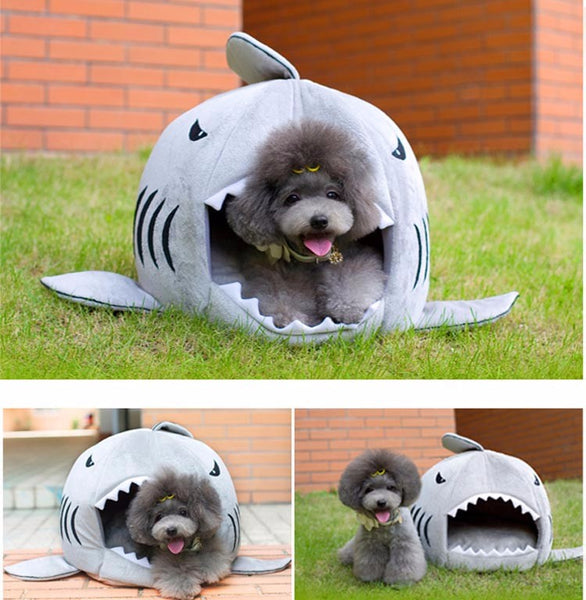 Shark Attack Doghouse