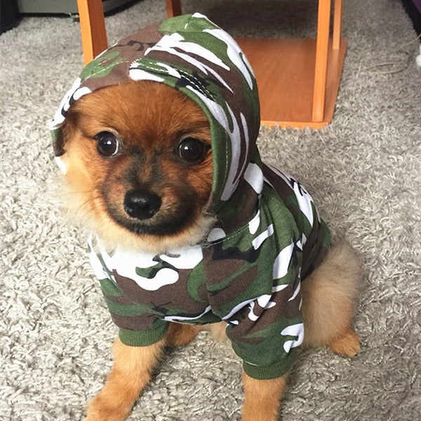 SECURITY or  Camo Hooded Dog Sweatshirt