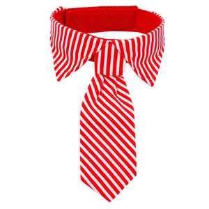 Red and white striped dog neck tie and collar