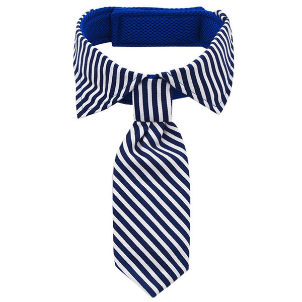 Blue and white striped dog neck tie and collar