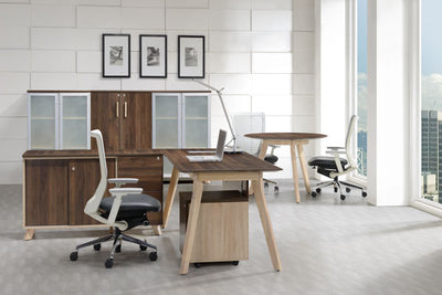 Glass doors office cupboar Dark Oak Top