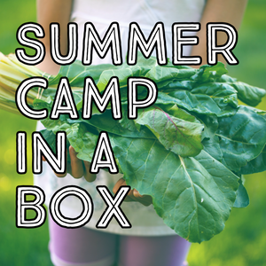 Summer Camp-In-A-Box