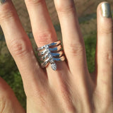 The Rib Cage Ring