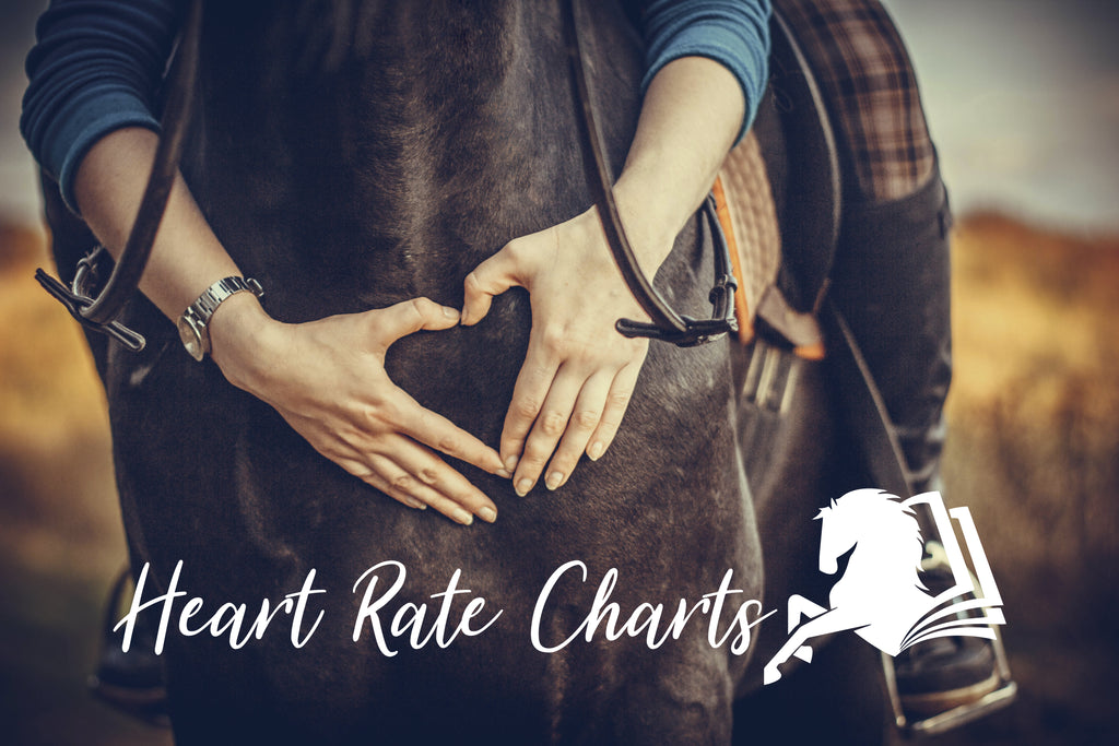 Heart Rate Charts - Endurance Journal
