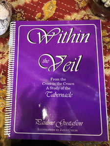 Within the Veil Bible Study