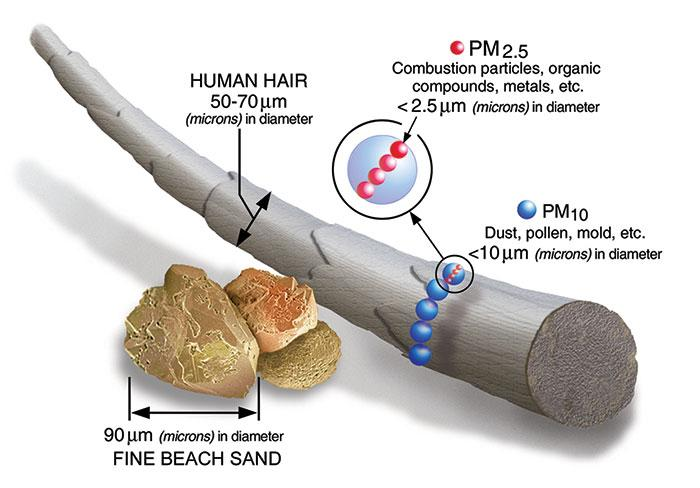 Particulate Matter (PM2.5 and PM10) Basics