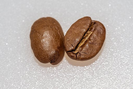 Robusta vs. Arabica