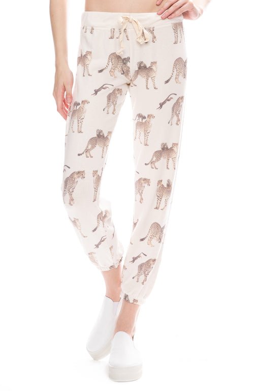 All Things Fabulous Cheetah Monkey Cozy Sweatpants