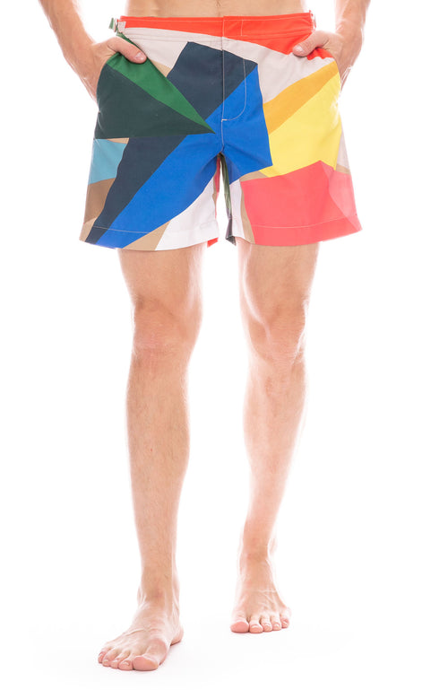 Bulldog Prism Print Swim Trunks
