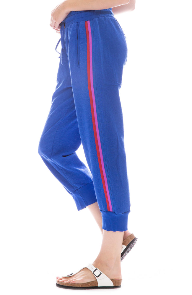 Desert Stripe Fleece Sweatpant